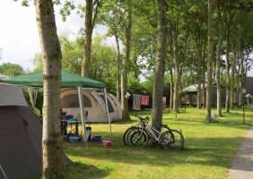 Carentan-Camping–Flower-Le-Haut-Dick-6