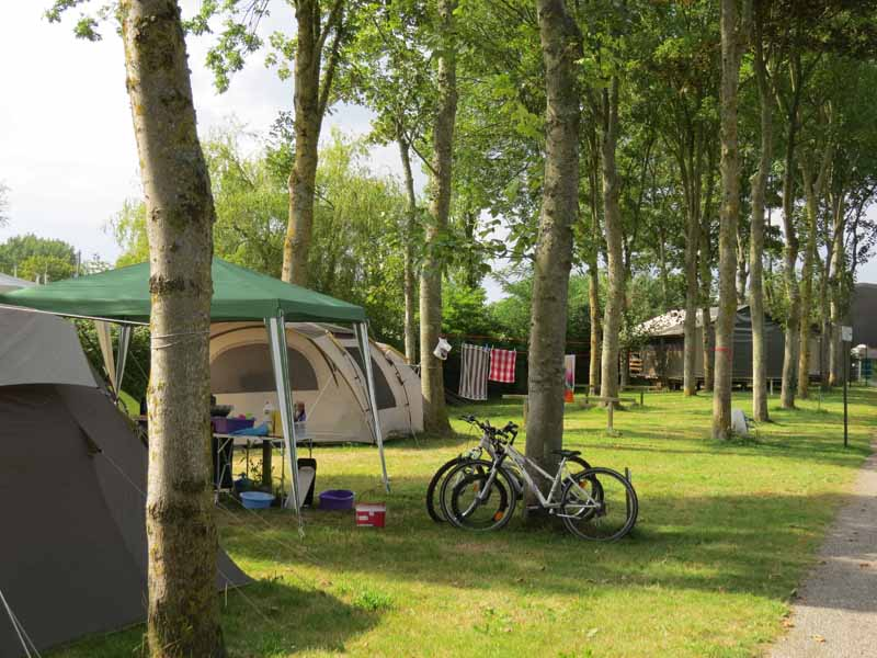 Carentan-Camping--Flower-Le-Haut-Dick-6