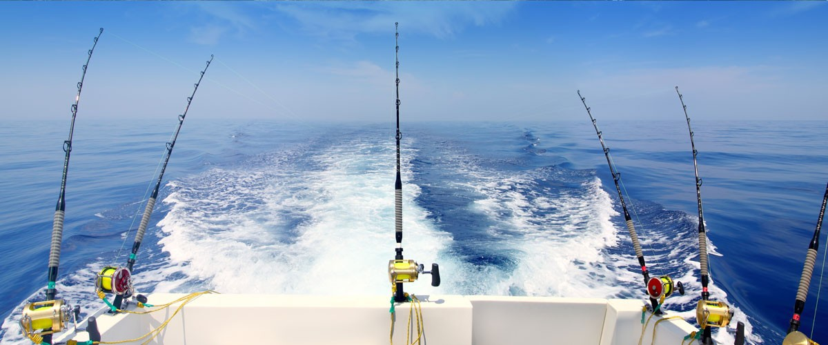 P che en mer ot baie du cotentin sainte m re eglise et for Delaware fishing charters