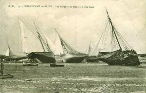 Picoteux - barques à voiles marais
