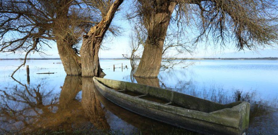 marais blanc eau nature hiver barque baie cotentin