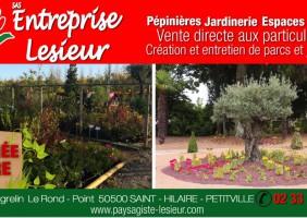 pepiniere_paysagiste_lesieur_saint_hilaire_petitville_baie_cotentin
