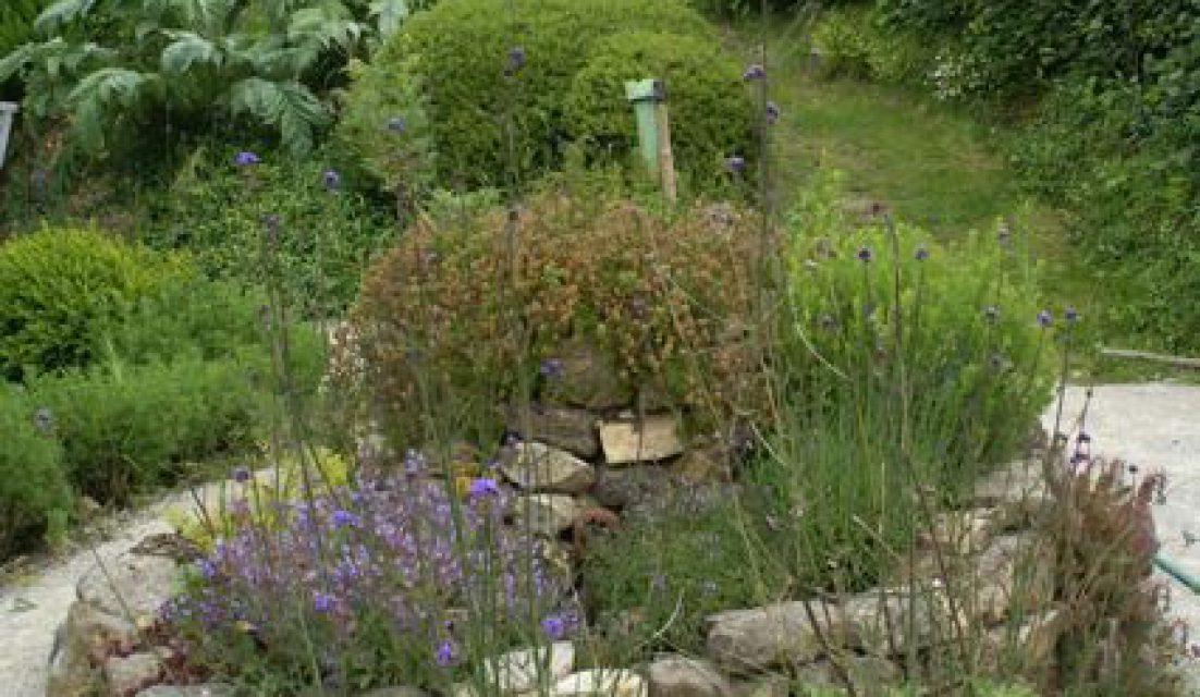 jardin naturel spirale herbes aroma