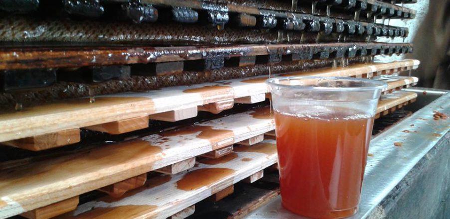 cidre cidrerie jus pomme visite verger terroir herout auvers baie cotentin