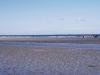 Balade à cheval sur la plage d\'Utah Beach, Sainte Marie du Mont