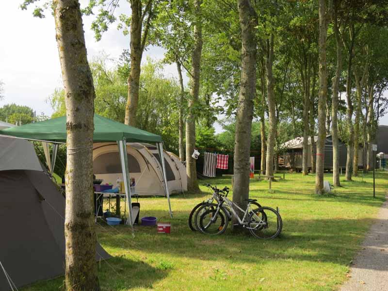 Carentan-Camping--Flower-Le-Haut-Dick-6