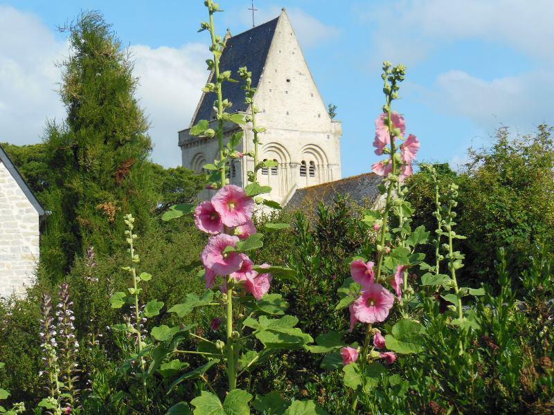 Jardin Presbytère BRUCHEVILLE (8)