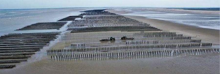 baie du cotentin viviers utah beach