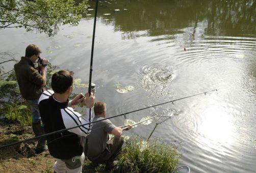 peche_ligne_poisson_riviere_eau_marais_baie_parc_cotentin