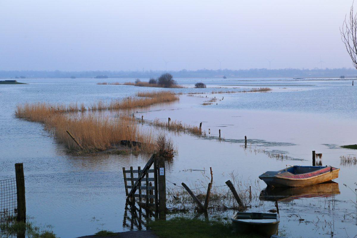 marais blanc eau nature hiver coucher soleil houesville baie cotentin