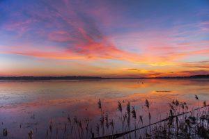 baie du cotentin marais blanc eau nature hiver coucher soleil
